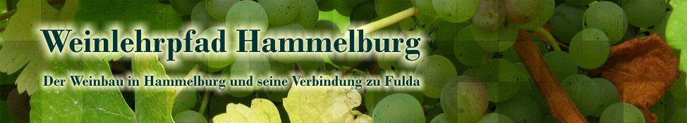 Weinlehrpfad der Stadt Hammelburg